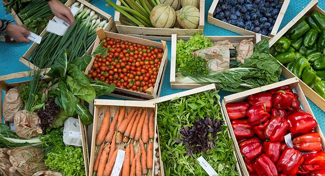 Bieristan circuit court légumes